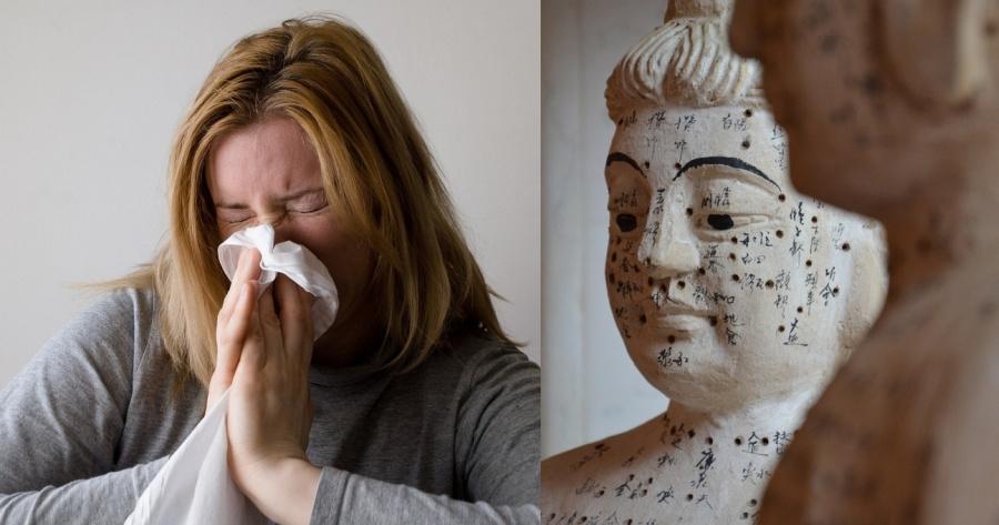 Rinite allergica e agopuntura